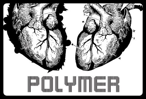 Polymer 2009